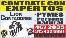 Contador Público - Contabilidad para Pymes -Impuestos - Declaracion de Renta ( LION CONTADORES )