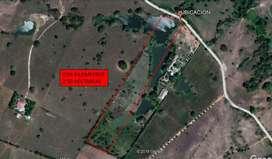 Se vende lote de 2.5 hectáreas entre Sincelejo y las palmas