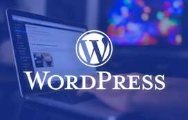 Necesito programador web wprdpress