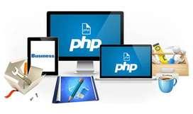 Desarrollador / programador de software WEB