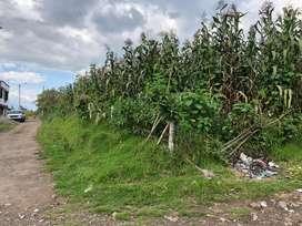 Se vernde terreno de 1000 metros Otavalo sector Quinchuqui cerca la pana