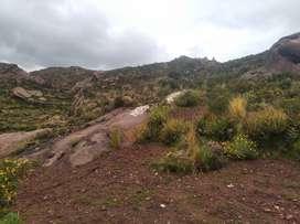 En el Jardín de la ciudad de Puno, Jallihuaya, se vende 05 lotes de 240 m2 cada uno
