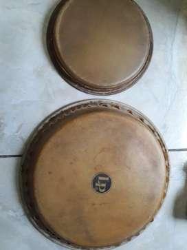 Parche bongo y quinto