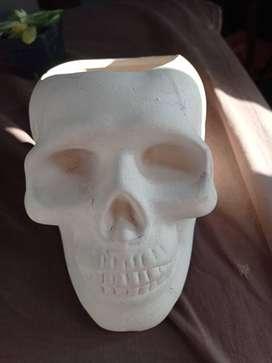 Macetas forma de cráneo