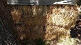 Fardos para Decoración O Pastura