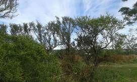 Vendo Terreno Valle de Alta Gracia