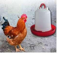 Bebedero Para Pollos De 3 Litros