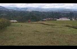 Terreno Fusagasugá Cundinamarca 1000 mts2