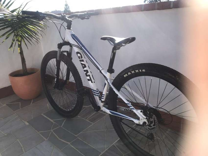 Cicla giant revel rin 29 0