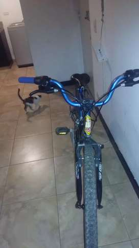 Vendo cicla Rin26 Todo terreno
