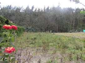 Venta de terreno Locoa 1.300m2