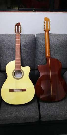 Guitarras Andina