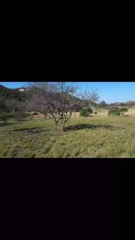 Se vende terreno en Country EL POTRERILLO DE LARRETA