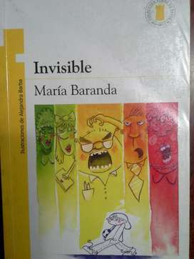 PLAN LECTOR INVISIBLE Ed NORMA