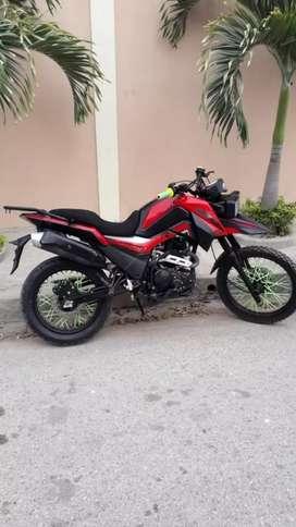 Moto shineray nueva