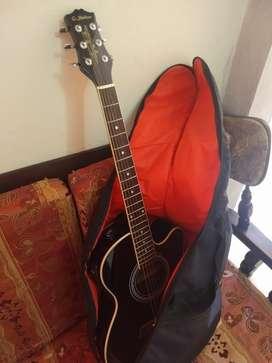 Guitarra Electroacústica G-shelter