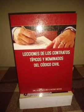 Lecciones de los Contratos Típicos y Nominados del Código Civil (Dr. Luis Castro Reyes)