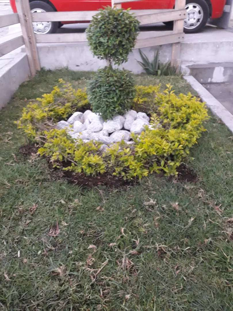 Jardineria Mas barata