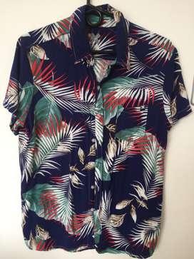 Diferentes camisas (nuevas)