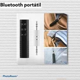 Bluetooth portátil.