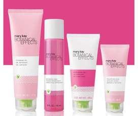 skin care mary kay botanical effects