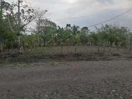 Lote 756m2