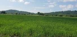 Se Vende Hcda (Tierras Agrícolas y Ganadería)