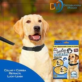 Correa Y Collar Retractil 2 En 1 Lucky Leash Perros Mascotas