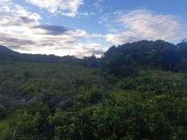 Terreno de 1 a 8 hectáreas