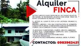 SE ALQUILA CASA HABITABLE Y FINCA DE CACAO Y FRUTAS