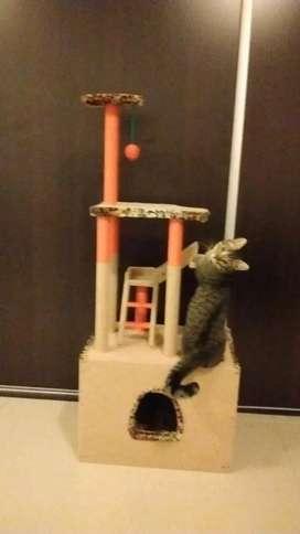 Rascador para Gatos!