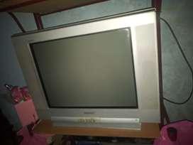 Vendo televisor SONY TRINITON