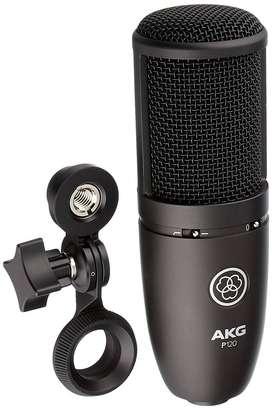 Microfono AKG P120 CONDENSADOR DE ESTUDIO