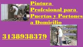 PINTORES PROFESIONAL PARA PORTONES, PUERTAS Y REJAS