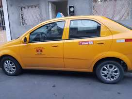 Taxis 2019, 2018, 2015, 2014 ,2010