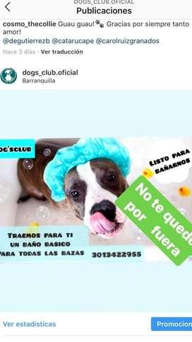Baños Canino