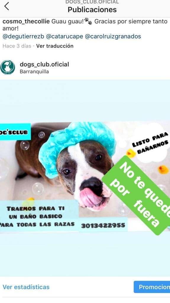 Baños Canino 0
