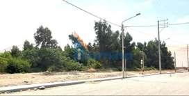 Terrenos en Urbanizacion - TACNA