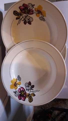 Platos de Porcelana X6