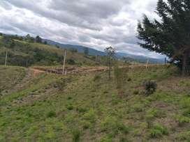 Lote En Parcelacion Bosques De Cajibio