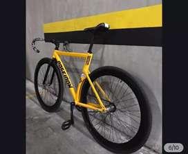 Bicicleta poseidon