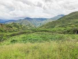 En Venta Terreno de 6,2 hectáreas en Tumianuma