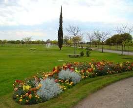 Parcelas en Cementerio Parque Azul