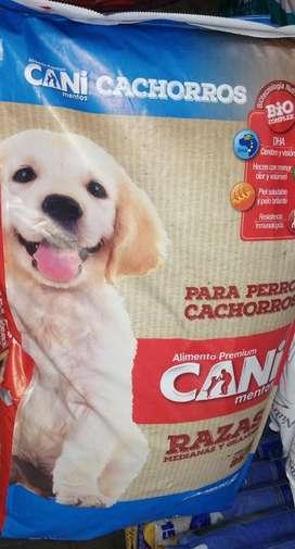 Cani/cachorros