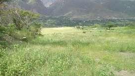 Terreno de 3.2 Hectarias Sector  Santa Isabel