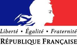 Cursos de francés con profesora europea diplomada en Francia virtual (online)
