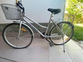 Bicicleta Viaggio, con canasto y porta paseo