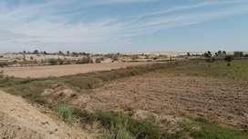 Venta de terreno cerca  a la nueva panamericana sur doble via km 208