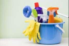 busco trabajo como personal de limpieza, cuidado de niños, o secretaria.
