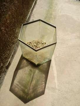 Pecera de vidrio hexagonal